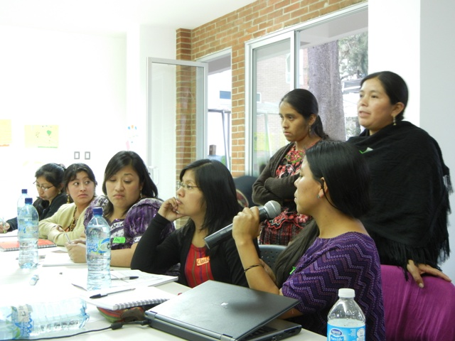 Indigenous women in a professional meeting